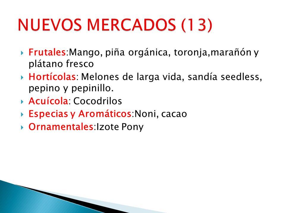Frutales:Mango, piña orgánica, toronja,marañón y plátano fresco Hortícolas: Melones de larga vida, sandía seedless, pepino y pepinillo. Acuícola: Coco