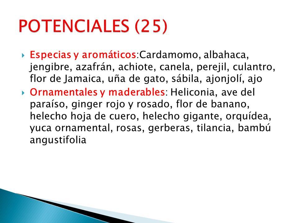 Especias y aromáticos:Cardamomo, albahaca, jengibre, azafrán, achiote, canela, perejil, culantro, flor de Jamaica, uña de gato, sábila, ajonjolí, ajo