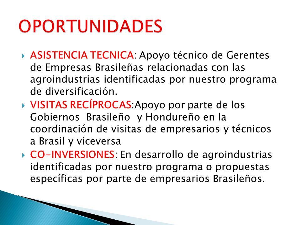 ASISTENCIA TECNICA: Apoyo técnico de Gerentes de Empresas Brasileñas relacionadas con las agroindustrias identificadas por nuestro programa de diversi