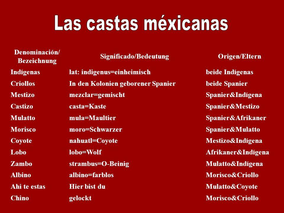 Denominación/ Bezeichnung Significado/BedeutungOrigen/Eltern Indígenaslat: indigenus=einheimischbeide Indígenas CriollosIn den Kolonien geborener Span