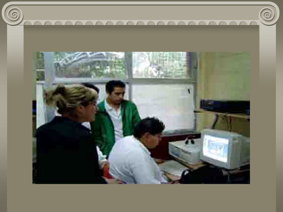 Fuentes de información Diccionario didáctico de Español avanzado para Secundaria y Preparatoria. – México :SEP : SM de Ediciones, 2002. 1264 p. – (Lib