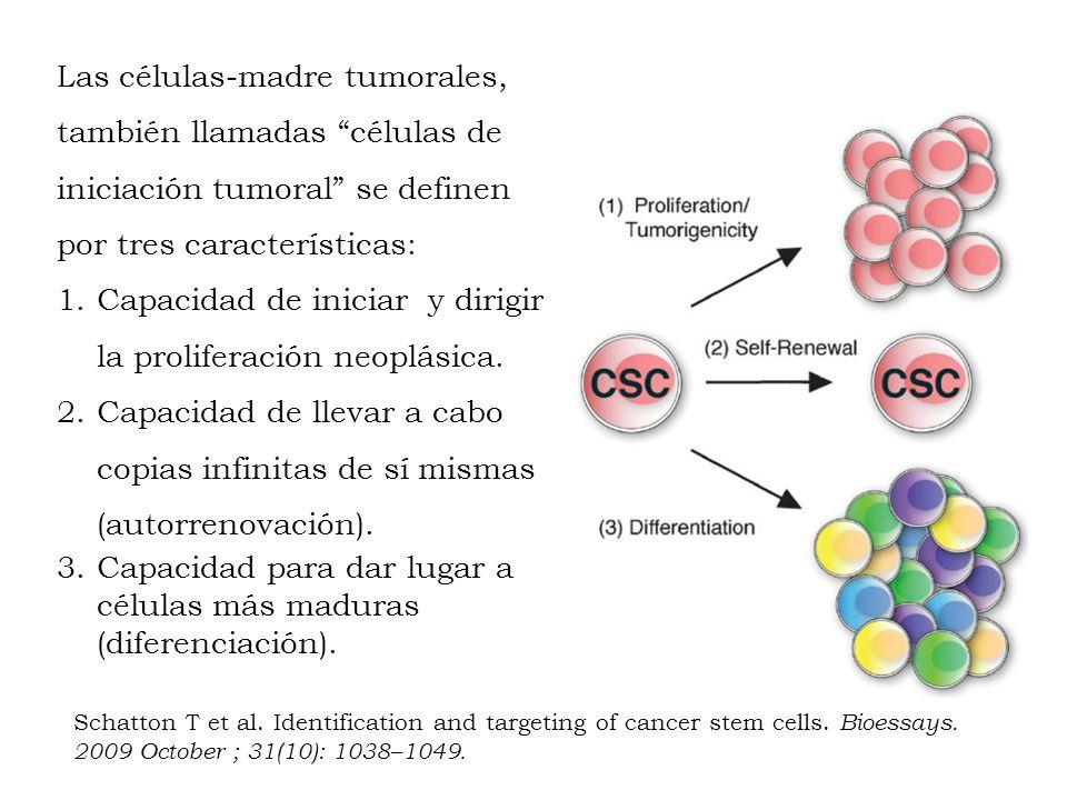Las células-madre tumorales, también llamadas células de iniciación tumoral se definen por tres características: 1.Capacidad de iniciar y dirigir la p