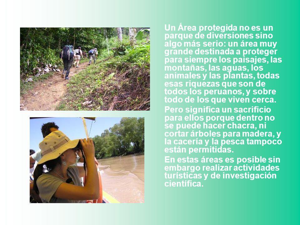 Un Área protegida no es un parque de diversiones sino algo más serio: un área muy grande destinada a proteger para siempre los paisajes, las montañas,