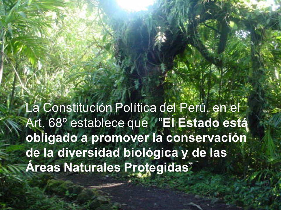 La Constitución Política del Perú, en el Art. 68º establece que El Estado está obligado a promover la conservación de la diversidad biológica y de las