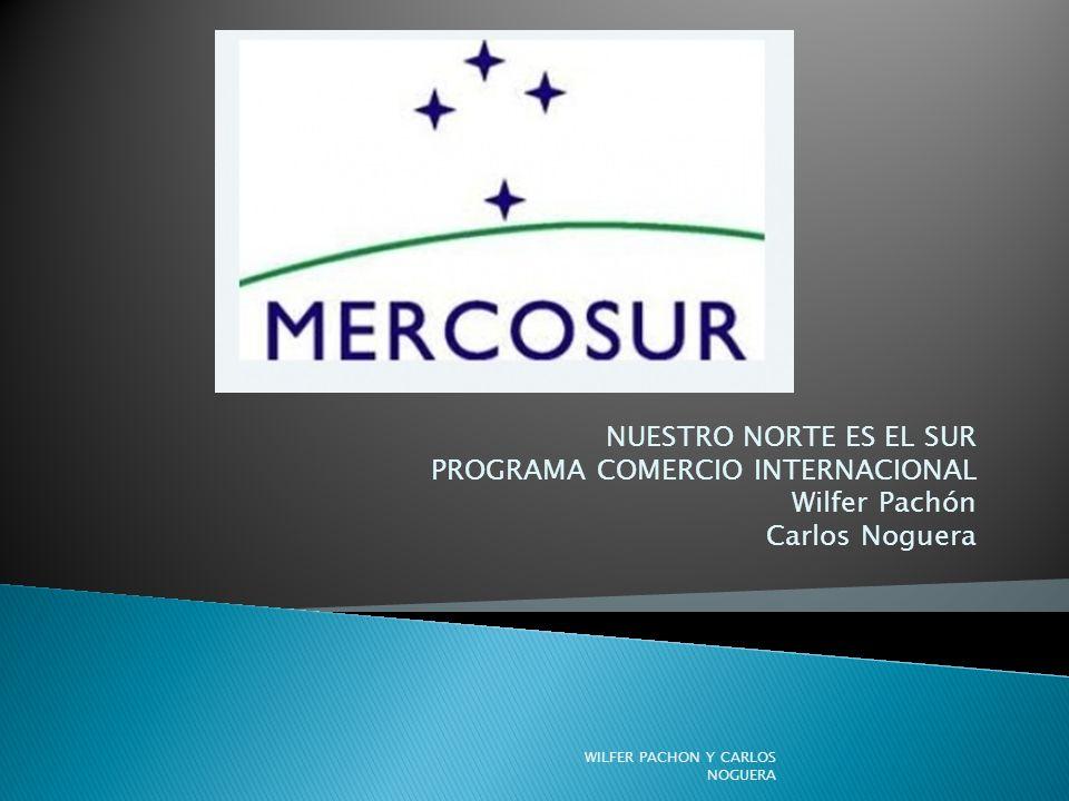 NUESTRO NORTE ES EL SUR PROGRAMA COMERCIO INTERNACIONAL Wilfer Pachón Carlos Noguera WILFER PACHON Y CARLOS NOGUERA