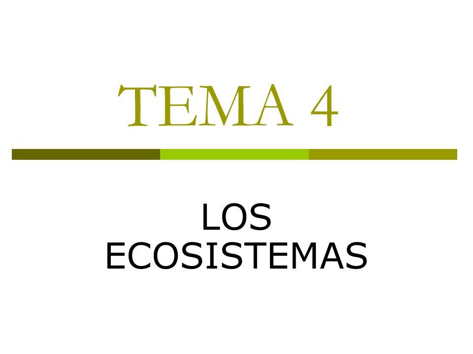 TEMA 4 LOS ECOSISTEMAS