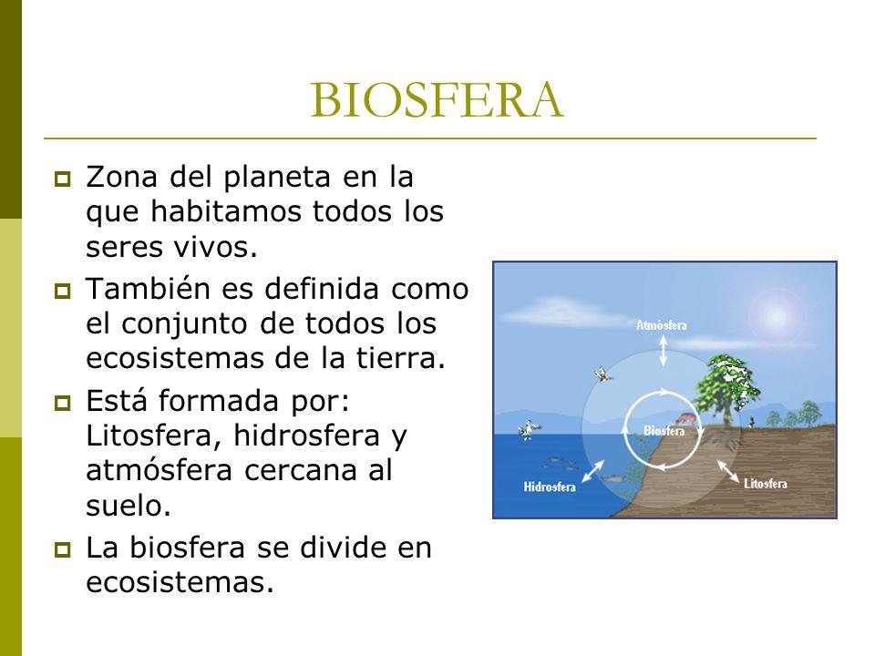 BIOSFERA Zona del planeta en la que habitamos todos los seres vivos. También es definida como el conjunto de todos los ecosistemas de la tierra. Está