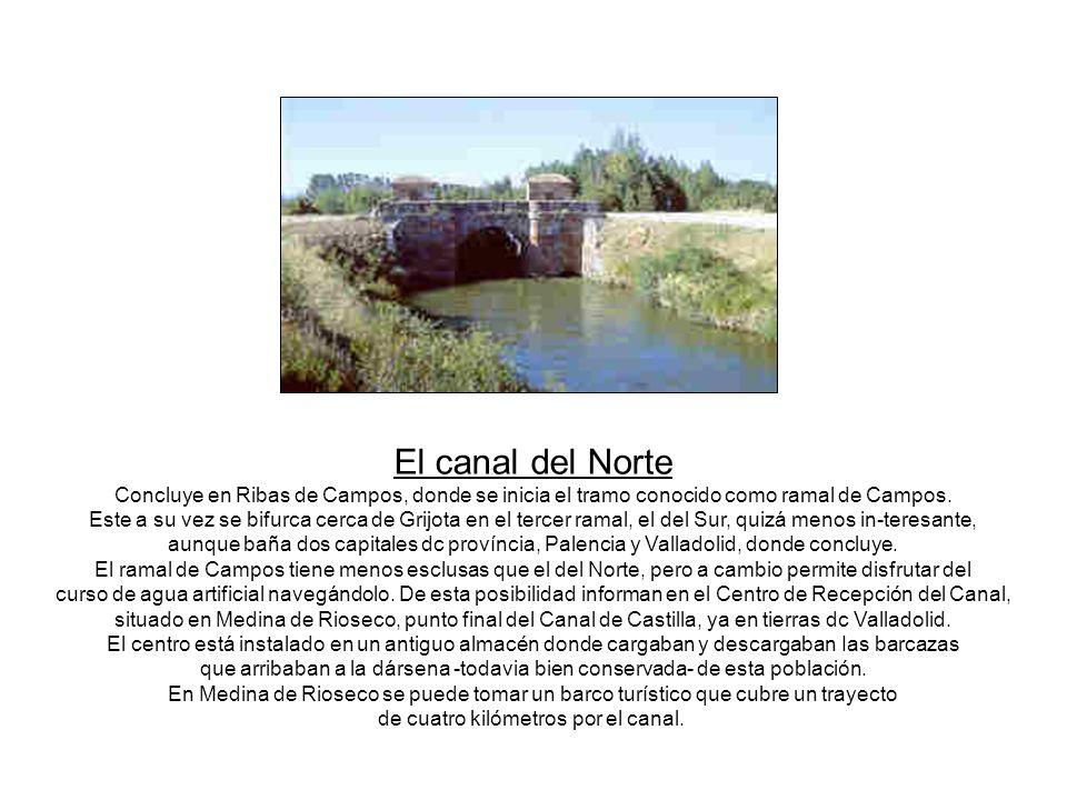 RAMAL DE CAMPOS. Desde la dársena de Medina de Rioseco parte una barcaza que recorre parte de este ramal, idôneo para navegar. FRÓMISTA. En esta pobla
