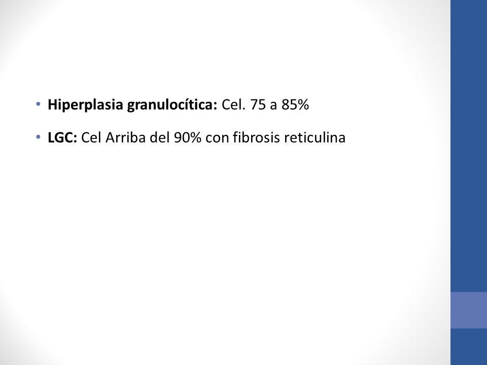 Hiperplasia granulocítica: Cel. 75 a 85% LGC: Cel Arriba del 90% con fibrosis reticulina