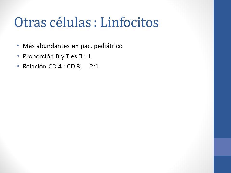 Otras células : Linfocitos Más abundantes en pac. pediátrico Proporción B y T es 3 : 1 Relación CD 4 : CD 8, 2:1