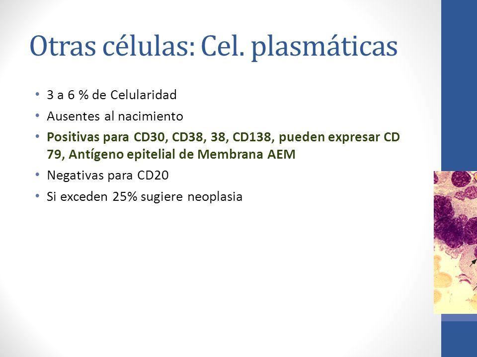 Otras células: Cel. plasmáticas 3 a 6 % de Celularidad Ausentes al nacimiento Positivas para CD30, CD38, 38, CD138, pueden expresar CD 79, Antígeno ep