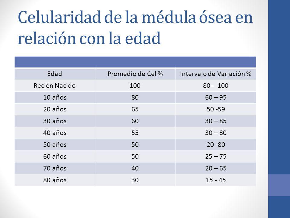 Celularidad de la médula ósea en relación con la edad EdadPromedio de Cel %Intervalo de Variación % Recién Nacido10080 - 100 10 años8060 – 95 20 años6