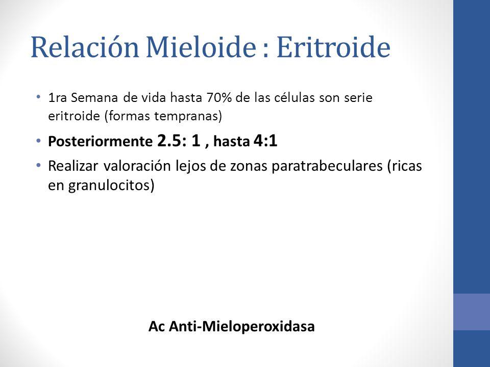 Relación Mieloide : Eritroide 1ra Semana de vida hasta 70% de las células son serie eritroide (formas tempranas) Posteriormente 2.5: 1, hasta 4:1 Real