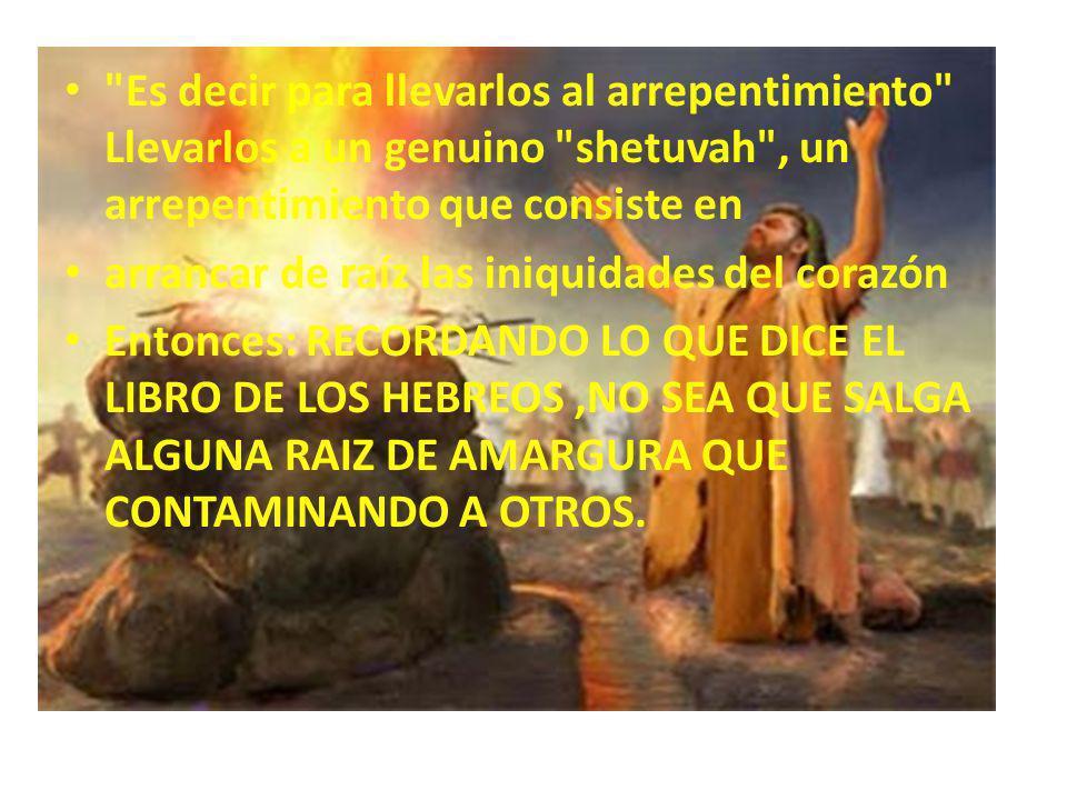 CAE FUEGO DEL CIELO Y CONSUME EL HOLOCAUSTO Y LAME EL AGUA HASTA LA ZANJA PREVIAMENTE HECHA LA UNICA Y VERDERA ADORACION SE DARÁ SOLAMENTE CUANDO ESTOS ELEMENTOS ESTEN REUNIDOS !.