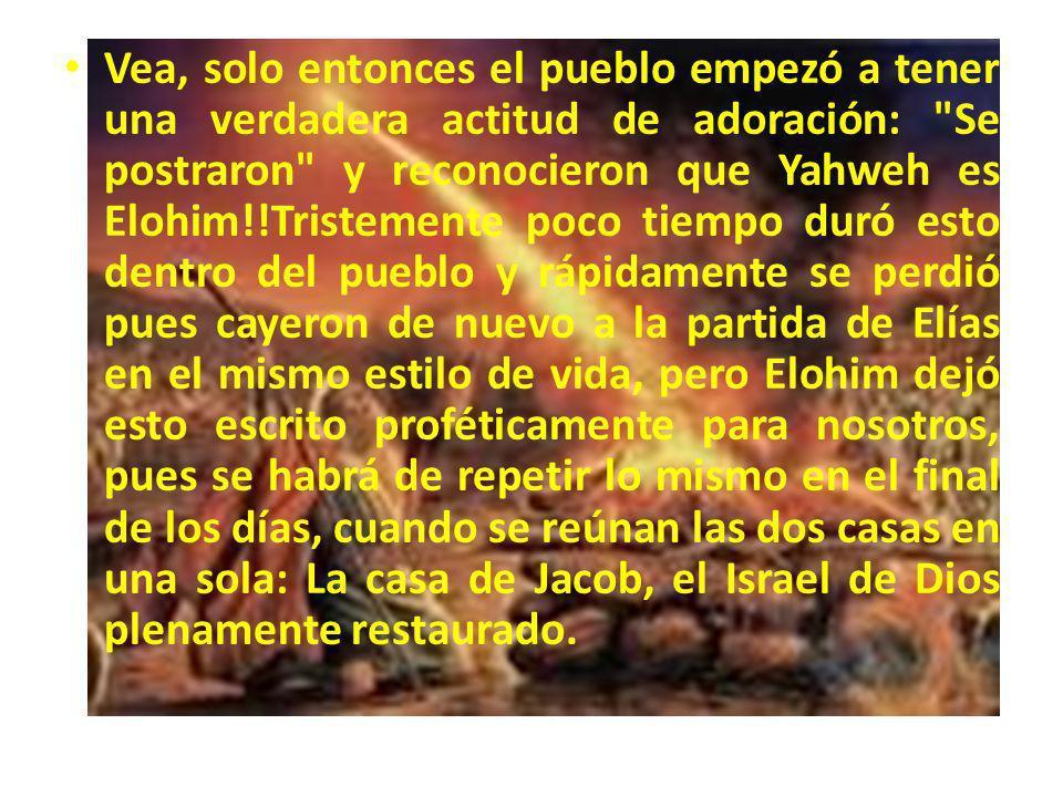 Oiga esto: Solo hasta que caiga el fuego de YAHWEH sobre las doce piedras, SE RESTAURARA TOTALMENTE EL TABERNACULO DE DAVID QUE ESTA CAIDO!.