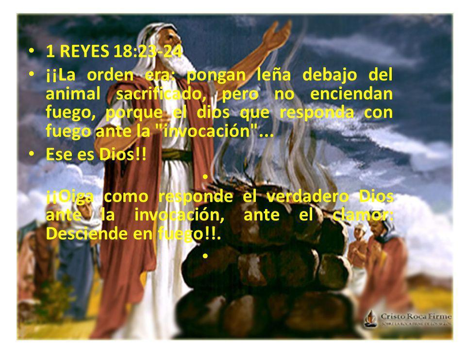 1 REYES 18:23-24 ¡¡La orden era: pongan leña debajo del animal sacrificado, pero no enciendan fuego, porque el dios que responda con fuego ante la