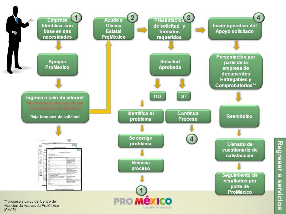 Regresar a servicios Empresa Identifica con base en sus necesidades Apoyos ProMéxico Acude a Oficina Estatal ProMéxico Presentación de solicitud y for