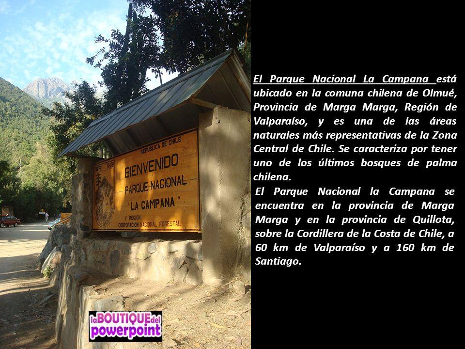 El Parque Nacional La Campana está ubicado en la comuna chilena de Olmué, Provincia de Marga Marga, Región de Valparaíso, y es una de las áreas naturales más representativas de la Zona Central de Chile.