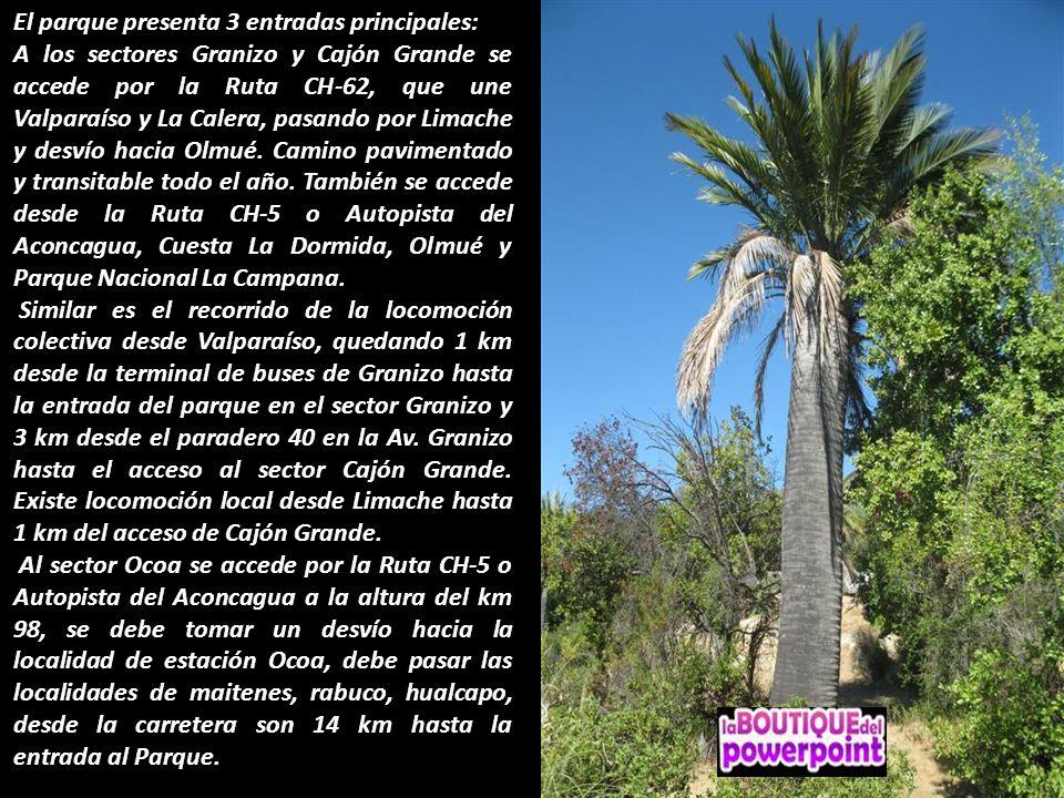 El parque presenta 3 entradas principales: A los sectores Granizo y Cajón Grande se accede por la Ruta CH-62, que une Valparaíso y La Calera, pasando por Limache y desvío hacia Olmué.