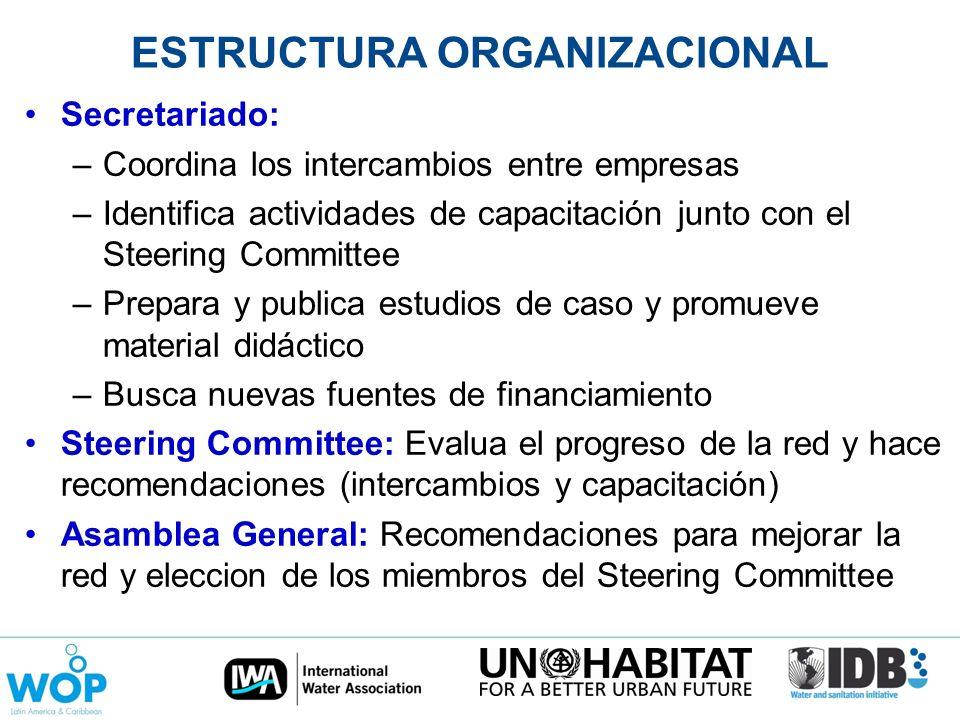 ESTRUCTURA ORGANIZACIONAL Secretariado: –Coordina los intercambios entre empresas –Identifica actividades de capacitación junto con el Steering Commit