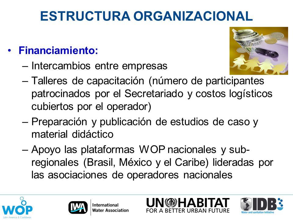 ESTRUCTURA ORGANIZACIONAL Financiamiento: –Intercambios entre empresas –Talleres de capacitación (número de participantes patrocinados por el Secretar