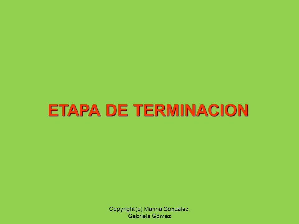 ETAPA DE TERMINACION Copyright (c) Marina González, Gabriela Gómez