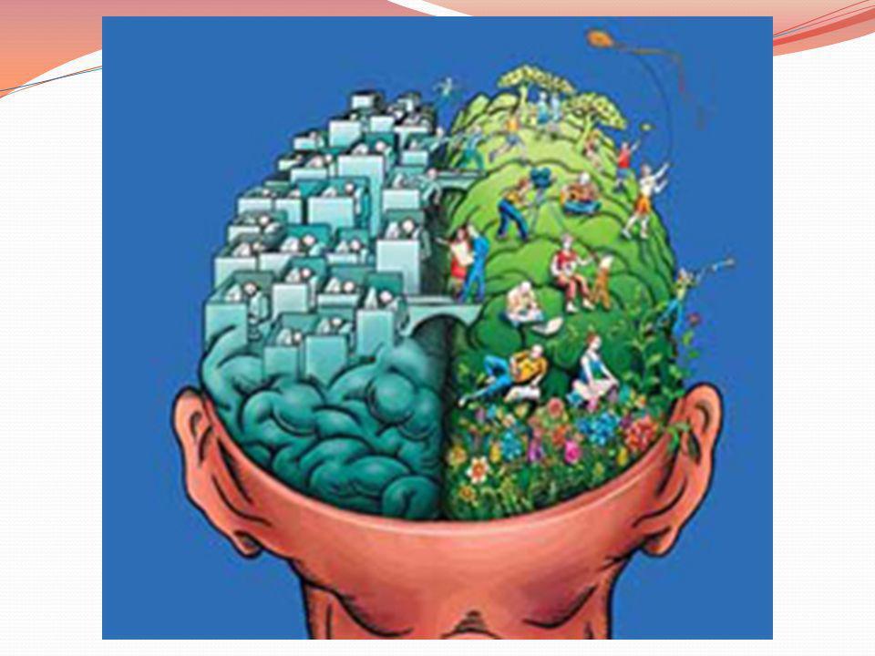 Para un niño pequeño, cualquier experiencia aprendida y repetida con cierta frecuencia produce plasticidad neuronal o sea, nuevos circuitos neuronales que hasta el momento no se habían producido y que le permiten desarrollar nuevas conductas, adquisiciones o comportamientos.