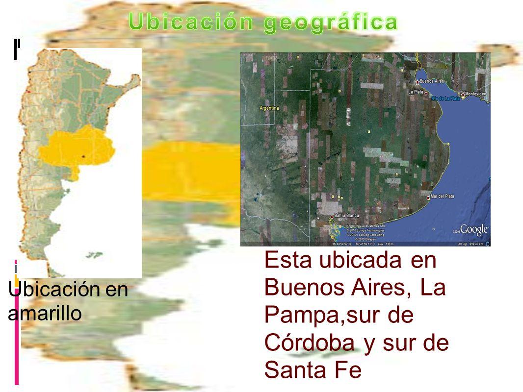 Ubicación en amarillo Esta ubicada en Buenos Aires, La Pampa,sur de Córdoba y sur de Santa Fe