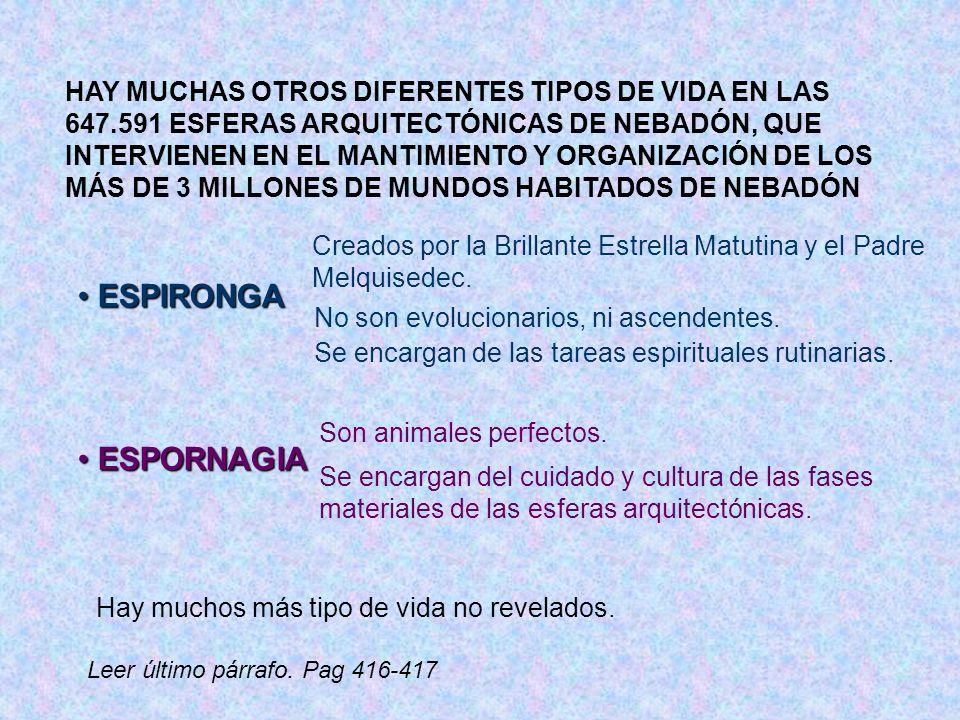 HAY MUCHAS OTROS DIFERENTES TIPOS DE VIDA EN LAS 647.591 ESFERAS ARQUITECTÓNICAS DE NEBADÓN, QUE INTERVIENEN EN EL MANTIMIENTO Y ORGANIZACIÓN DE LOS M