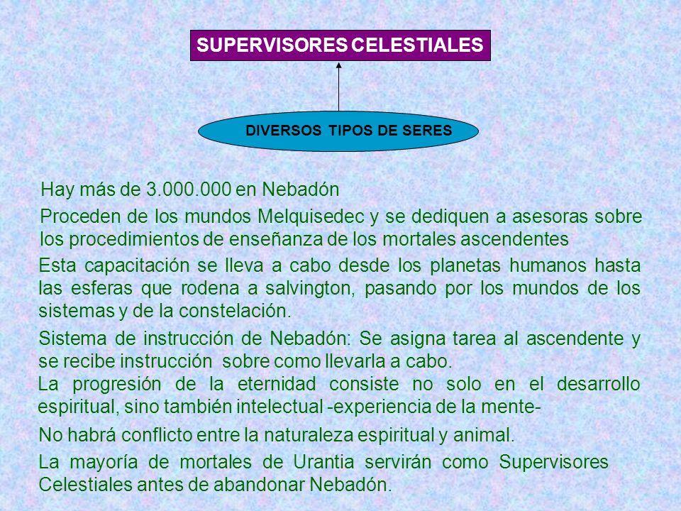 SUPERVISORES CELESTIALES DIVERSOS TIPOS DE SERES Hay más de 3.000.000 en Nebadón Proceden de los mundos Melquisedec y se dediquen a asesoras sobre los