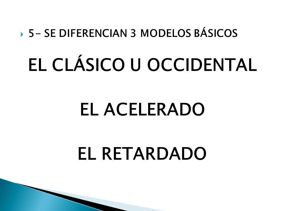 5- SE DIFERENCIAN 3 MODELOS BÁSICOS EL CLÁSICO U OCCIDENTAL EL ACELERADO EL RETARDADO