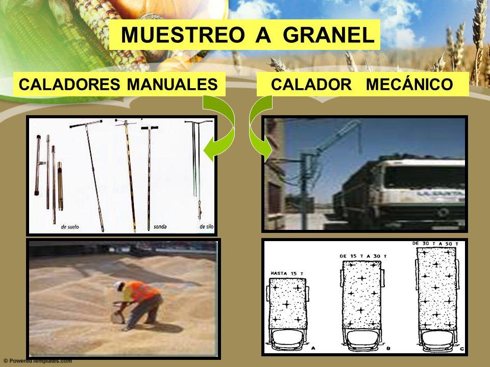 MUESTREO A GRANEL CALADORES MANUALES CALADOR MECÁNICO