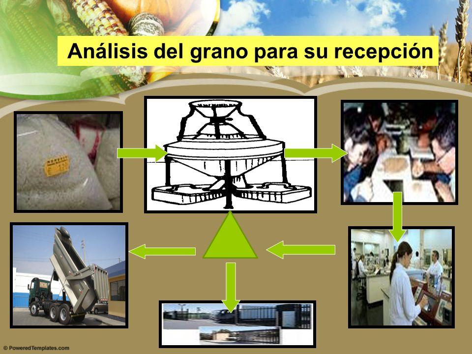 Análisis del grano para su recepción