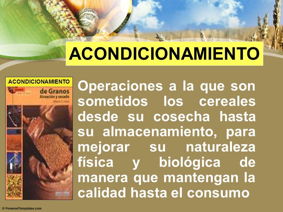 ACONDICIONAMIENTO Operaciones a la que son sometidos los cereales desde su cosecha hasta su almacenamiento, para mejorar su naturaleza física y biológ