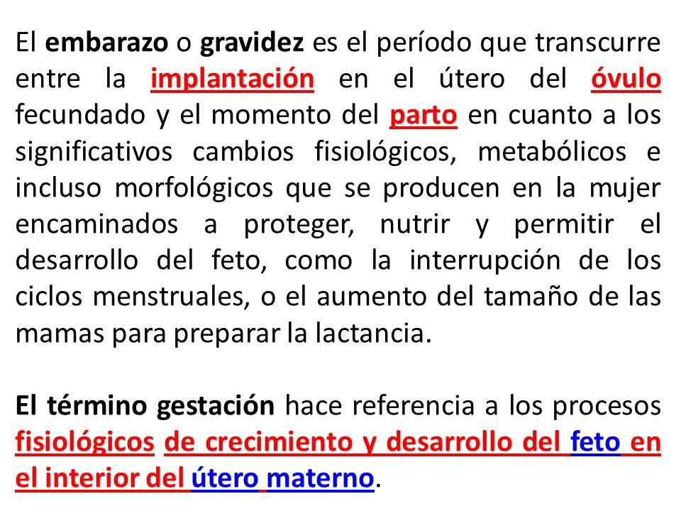En teoría, la gestación es del fetoteoría gestación feto El embarazo es de la mujer mujer aunque en la práctica muchas personas utilizan ambos términos como sinónimos.