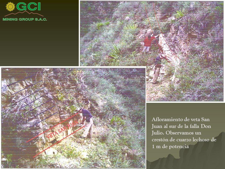 Afloramiento de veta San Juan al sur de la falla Don Julio.