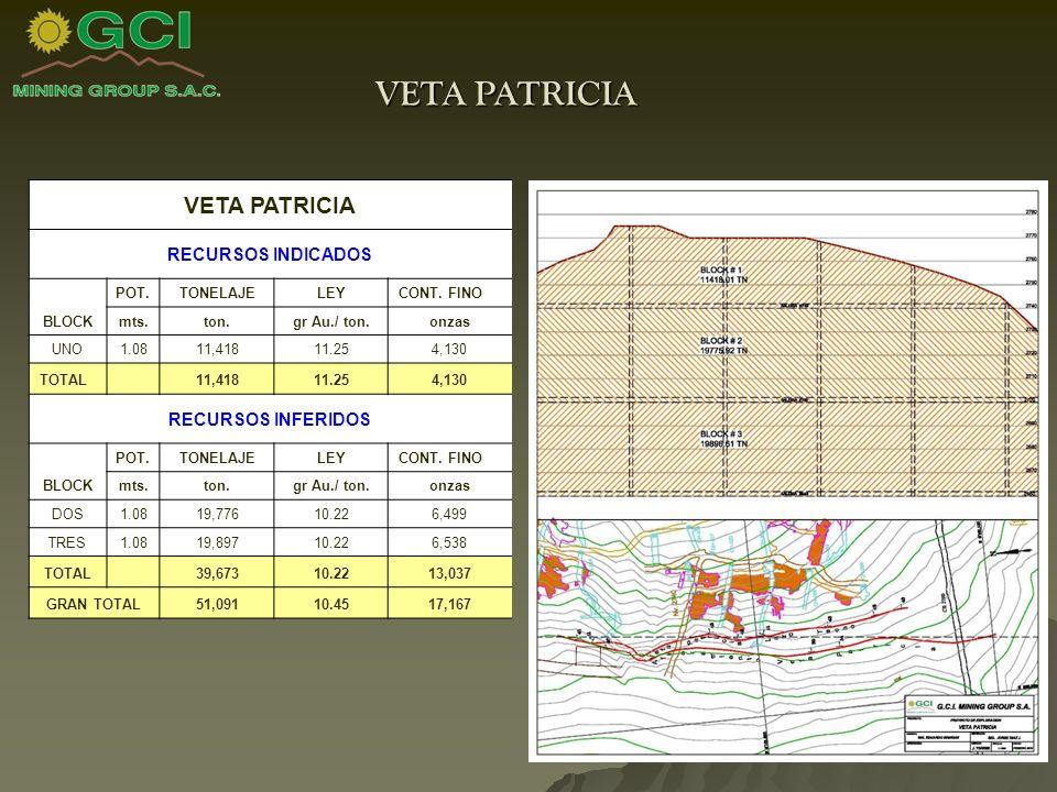VETA PATRICIA RECURSOS INDICADOS BLOCK POT.TONELAJELEYCONT.