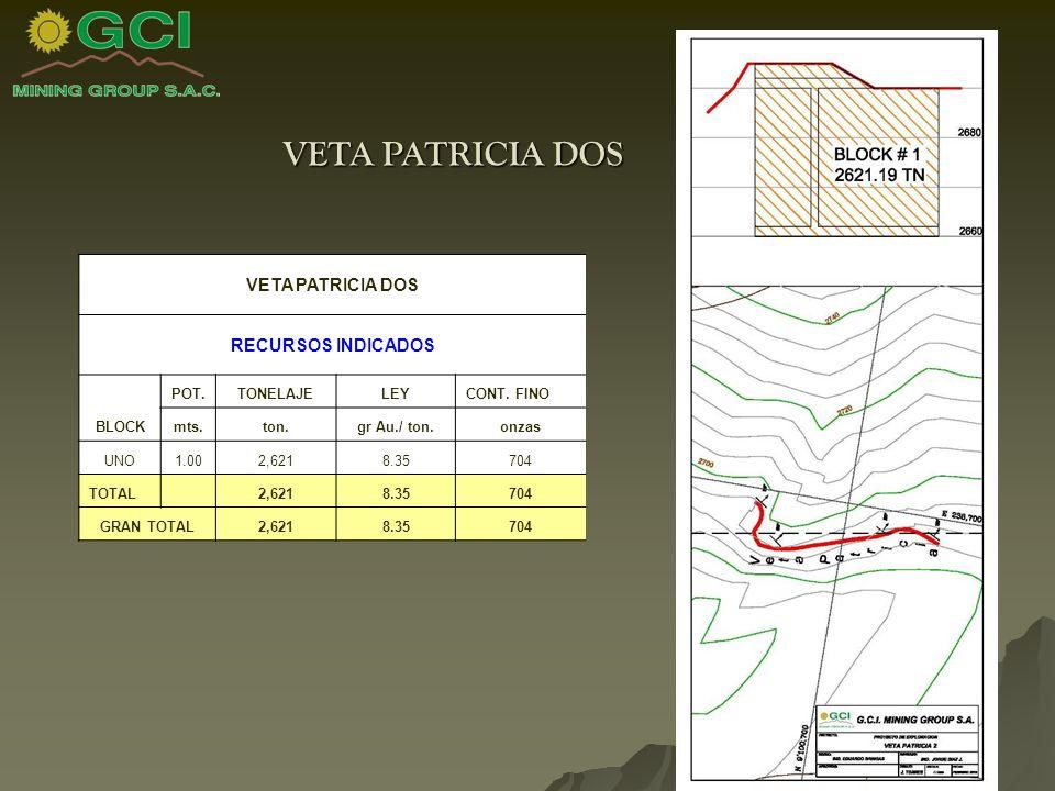 VETA PATRICIA DOS RECURSOS INDICADOS BLOCK POT.TONELAJELEYCONT.