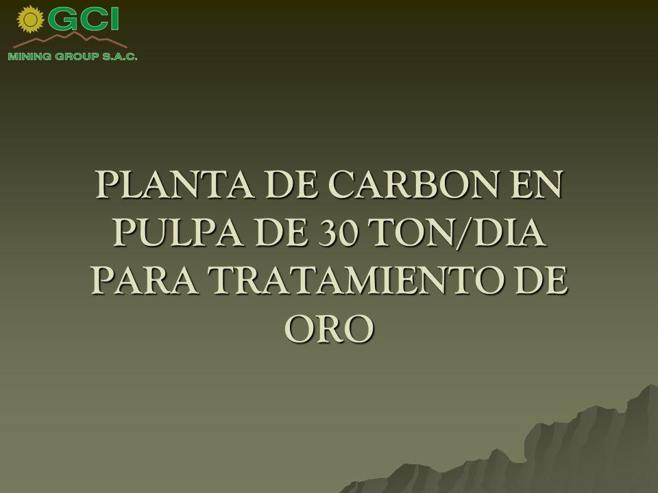 PLANTA DE CARBON EN PULPA DE 30 TON/DIA PARA TRATAMIENTO DE ORO