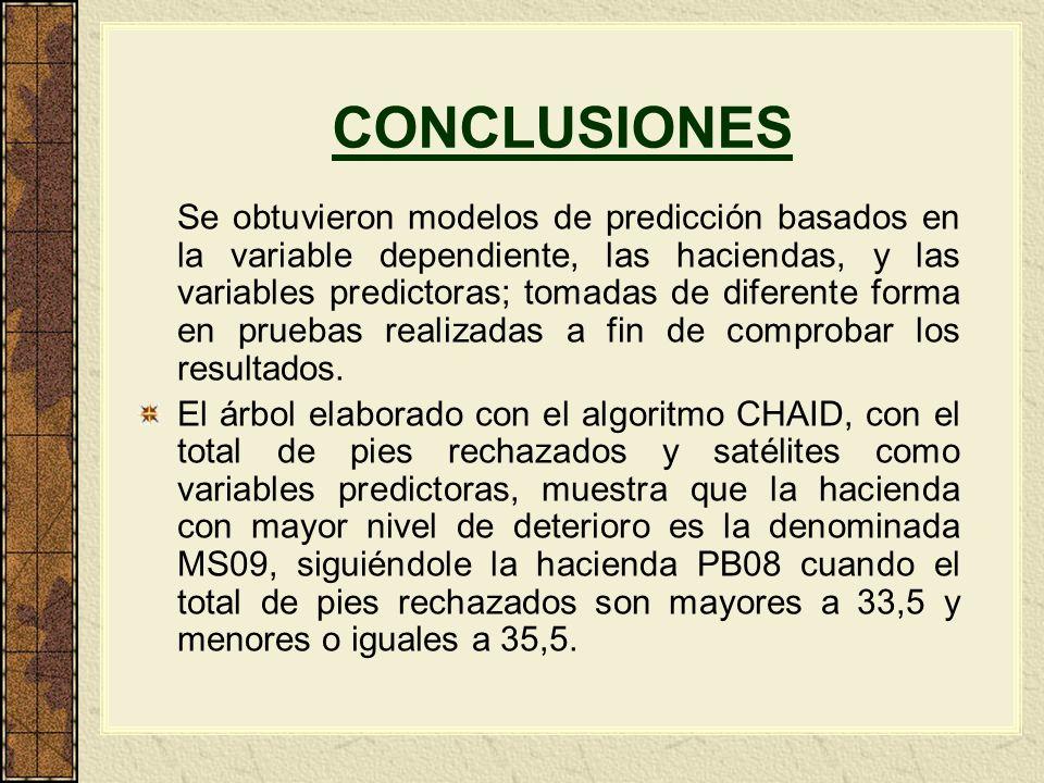 CONCLUSIONES Se obtuvieron modelos de predicción basados en la variable dependiente, las haciendas, y las variables predictoras; tomadas de diferente