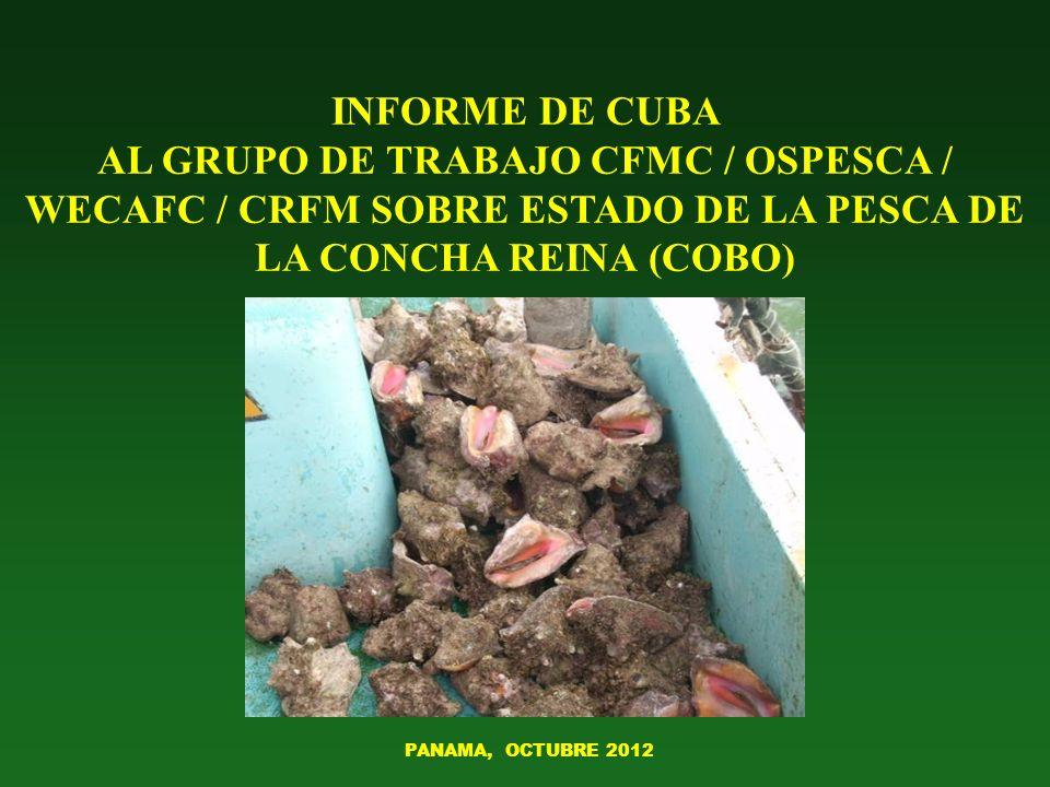 INFORME DE CUBA AL GRUPO DE TRABAJO CFMC / OSPESCA / WECAFC / CRFM SOBRE ESTADO DE LA PESCA DE LA CONCHA REINA (COBO) PANAMA, OCTUBRE 2012