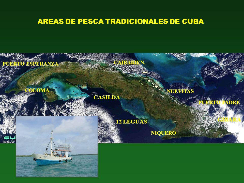 AREAS DE PESCA TRADICIONALES DE CUBA GIBARA CAIBARIEN. NUEVITA S 12 LEGUAS CASILDA COLOMA PUERTO ESPERANZA PUERTO PADRE NIQUERO