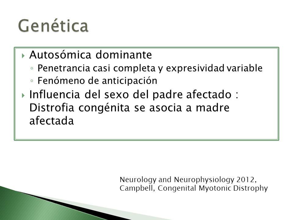 Autosómica dominante Penetrancia casi completa y expresividad variable Fenómeno de anticipación Influencia del sexo del padre afectado : Distrofia con