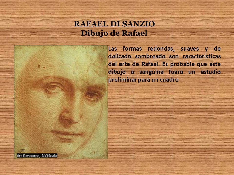 RAFAEL DI SANZIO Dibujo de Rafael Las formas redondas, suaves y de delicado sombreado son características del arte de Rafael. Es probable que este dib