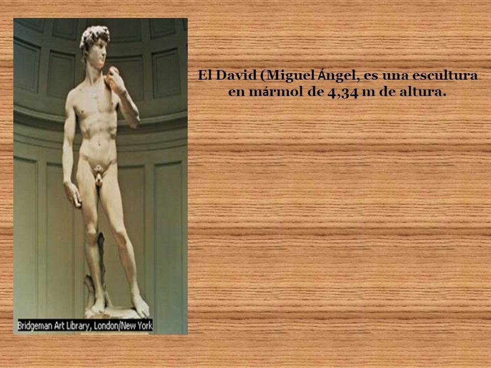 El David (Miguel Á ngel, es una escultura en m á rmol de 4,34 m de altura.
