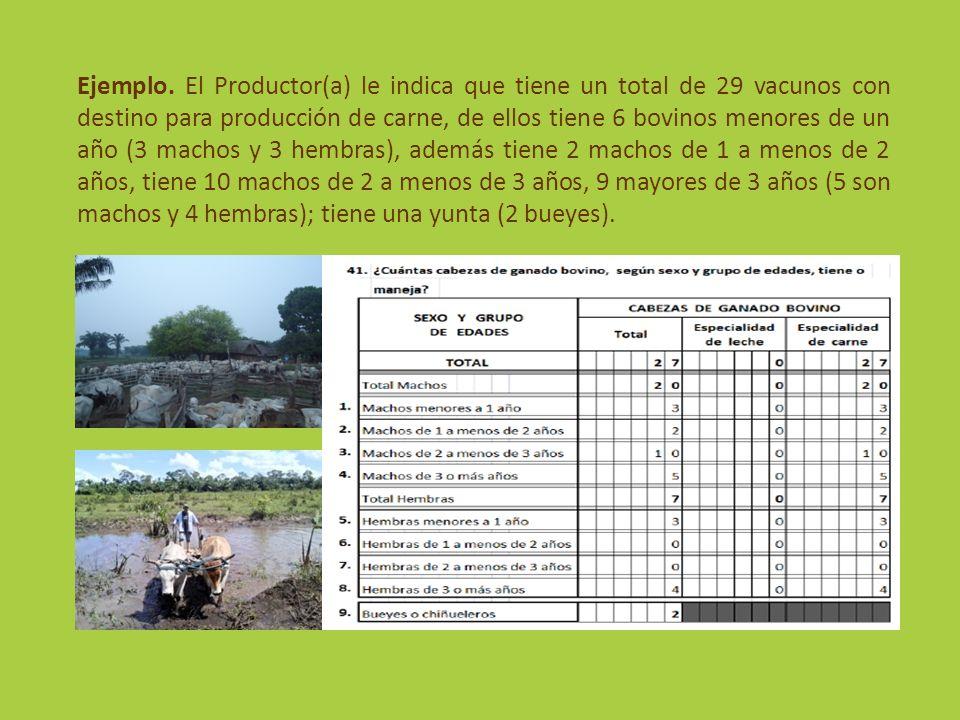 Ejemplo. El Productor(a) le indica que tiene un total de 29 vacunos con destino para producción de carne, de ellos tiene 6 bovinos menores de un año (