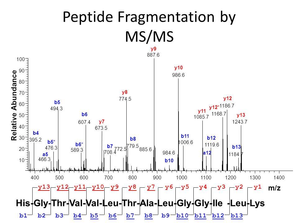 Peptide Fragmentation by MS/MS 10 20 30 40 50 60 70 80 90 100 Relative Abundance 395.2 y9 b4 40050060070080090010001100120013001400 m/z 887.6 986.6 77