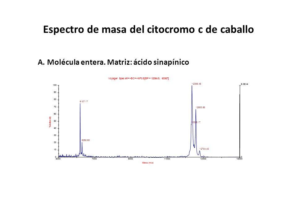 500070009000110001300015000 Mass (m/z) 0 6.0E+4 0 10 20 30 40 50 60 70 80 90 100 % Intensity Voyager Spec #1=>BC=>NF0.9[BP = 12364.9, 60367] 12366.46