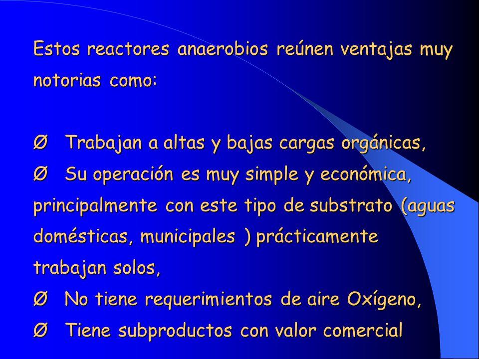Estos reactores anaerobios reúnen ventajas muy notorias como: Ø Trabajan a altas y bajas cargas orgánicas, Ø Su operación es muy simple y económica, p