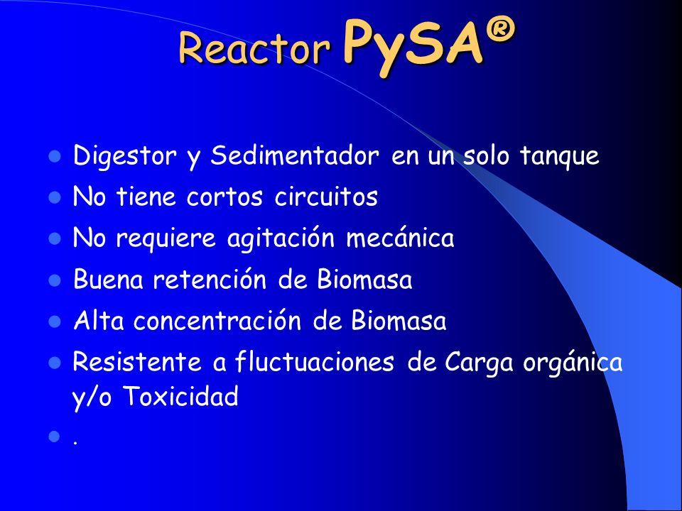 Reactor PySA ® Digestor y Sedimentador en un solo tanque No tiene cortos circuitos No requiere agitación mecánica Buena retención de Biomasa Alta conc